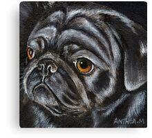 Black Pug Dog by Anthea M Canvas Print