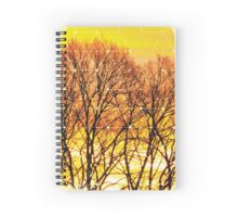 Nature and Geometry - Trees and Sunset Spiral Notebook
