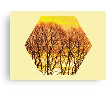 Nature and Geometry - Trees and Sunset Canvas Print