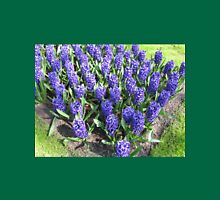 Beautiful Blue Hyacinths - Keukenhof Gardens Womens Fitted T-Shirt