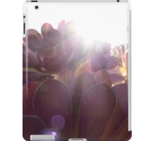 Sunny Succulents iPad Case/Skin
