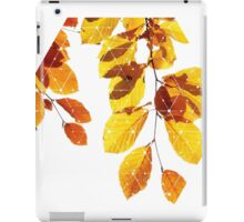 Nature and Geometry - Yellow Leaves  iPad Case/Skin
