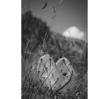 Love hurts (Opuntia) Photographic Print