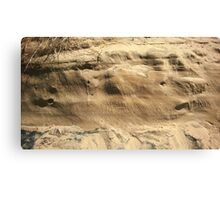 The Side of a Sand Dune Canvas Print