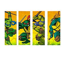 TMNT Super Hero Attack Photographic Print