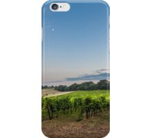 evening in the vineyard iPhone Case/Skin
