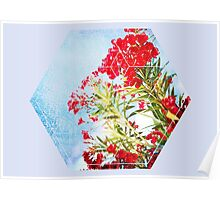 Nature and Geometry - Flowers Poster