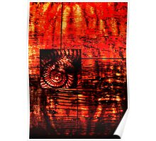 Evolution - Ammonite in Red  Poster
