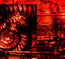 Evolution - Ammonite in Red  Sticker