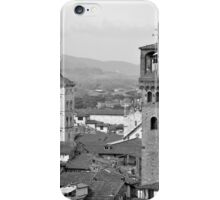 Lucca's rooftops and towers iPhone Case/Skin