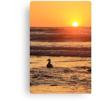 Time To Unwind Canvas Print