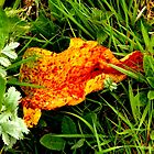 Orange is the new green  by widdy170