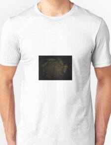 fish pond Unisex T-Shirt