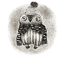 Baby Owl in a Funny Hat Photographic Print