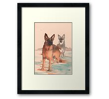 Doggy paddle Framed Print