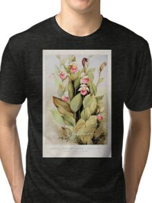 Southern wild flowers and trees together with shrubs vines Alice Lounsberry 1901 022 Showy Lady's Slipper Tri-blend T-Shirt