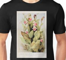 Southern wild flowers and trees together with shrubs vines Alice Lounsberry 1901 022 Showy Lady's Slipper Unisex T-Shirt