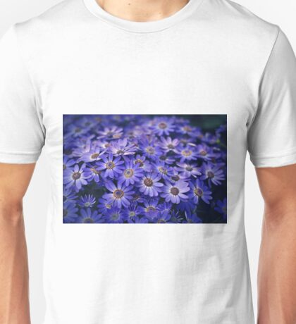 Cineraria Blue T-Shirt