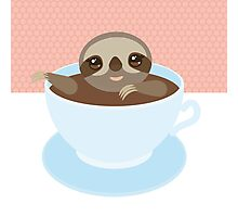 Sloth in a cup 1 Photographic Print