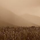 Heavy Rain at the Mountains by Imi Koetz