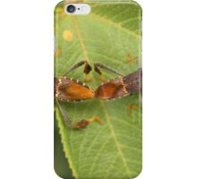 Two Leaf Footed Bugs on a Leaf iPhone Case/Skin