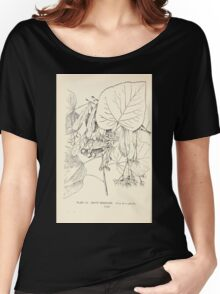 Southern wild flowers and trees together with shrubs vines Alice Lounsberry 1901 105 White Basswood Women's Relaxed Fit T-Shirt
