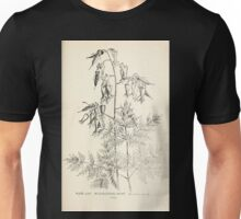 Southern wild flowers and trees together with shrubs vines Alice Lounsberry 1901 058 Wild Bleeding Heart Unisex T-Shirt
