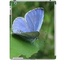 Beautiful Blue iPad Case/Skin