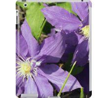 Spring Flower Series 44 iPad Case/Skin