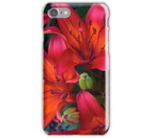 Spring Flower Series 45 iPhone Case/Skin