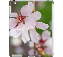 Spring Flower Series 49 iPad Case/Skin