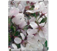 Spring Flower Series 50 iPad Case/Skin