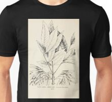 Southern wild flowers and trees together with shrubs vines Alice Lounsberry 1901 138 Green Ash Unisex T-Shirt