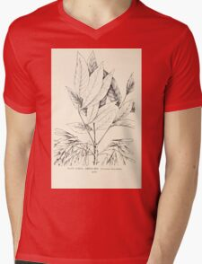 Southern wild flowers and trees together with shrubs vines Alice Lounsberry 1901 138 Green Ash Mens V-Neck T-Shirt