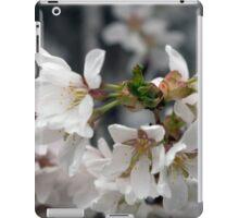 Spring Flower Series 55 iPad Case/Skin