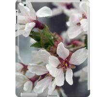 Spring Flower Series 58 iPad Case/Skin