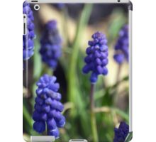 Spring Flower Series 13 iPad Case/Skin