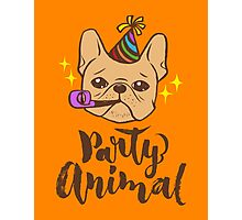 Party Animal Photographic Print