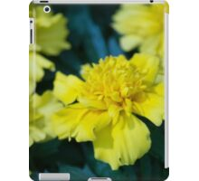 Spring Flower Series 6 iPad Case/Skin