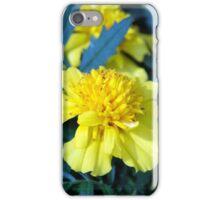 Spring Flower Series 5 iPhone Case/Skin