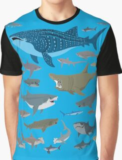 Know Your Sharks Graphic T-Shirt