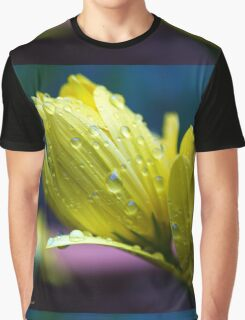 Sunshine After the Rain Graphic T-Shirt