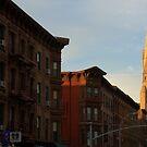 Edward Hopper in Brooklyn by John Carey