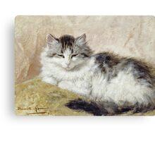 Vintage famous art - Henriette Ronner - A Cat Canvas Print
