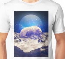 Under the Stars II (Ursa Major) Unisex T-Shirt