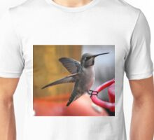 FEMALE ANNA'S ON PERCH Unisex T-Shirt