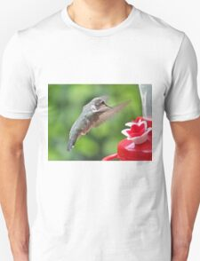 TIME FOR SOME SUGARY NECTAR Unisex T-Shirt
