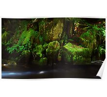 A beautiful Gorge in the Black Forest......... Poster