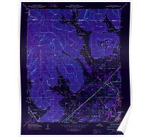 USGS TOPO Map Alabama AL Doran Cove 303697 1950 24000 Inverted Poster