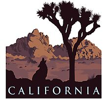 California. Photographic Print